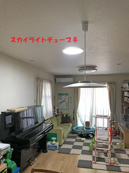 S-0060-p.jpg